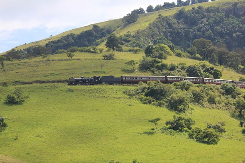 Home Page Umgeni Steam Railway Official Website