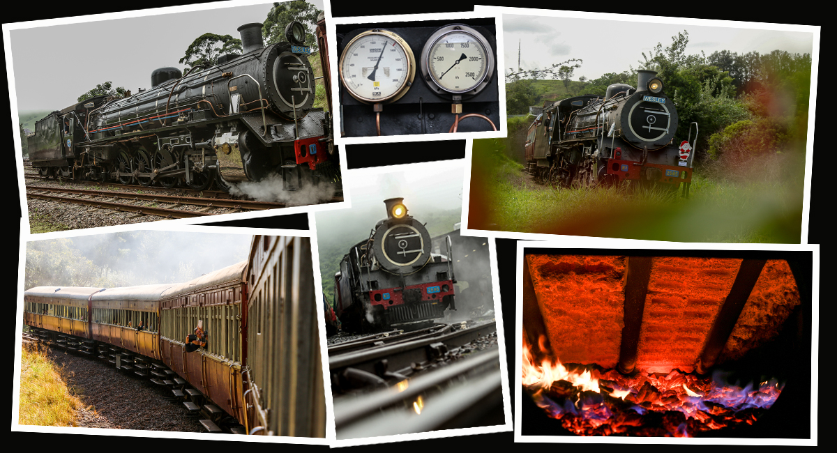 d36e95fdc6bd Home Page - Umgeni Steam Railway (Official Website)